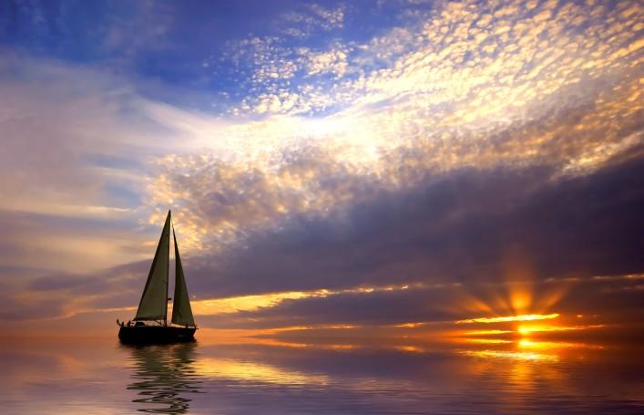sailingback