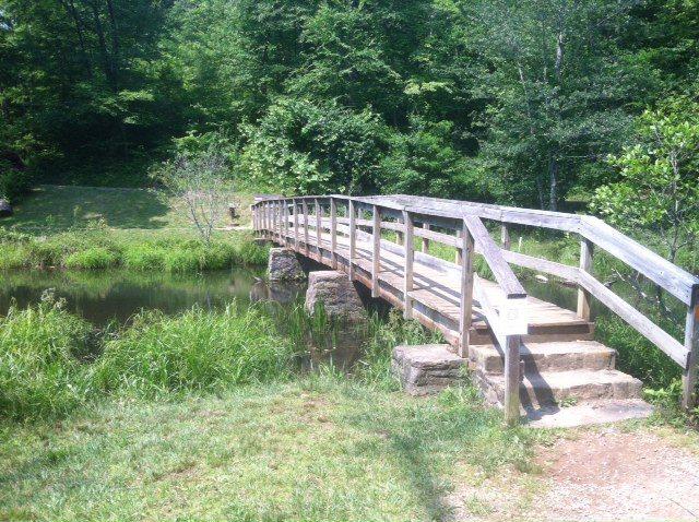 Bridge to Transformation