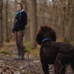 Pets in Grief – How Walking our Dog Became My Life Preserver