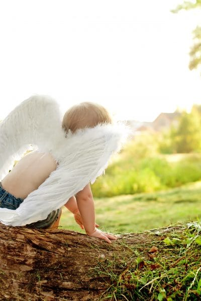 Baby boy wearing white angel wings, sitting on tree. Back view