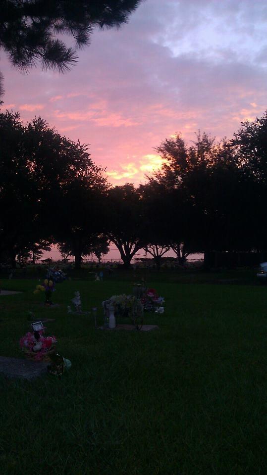 Cemetery Life