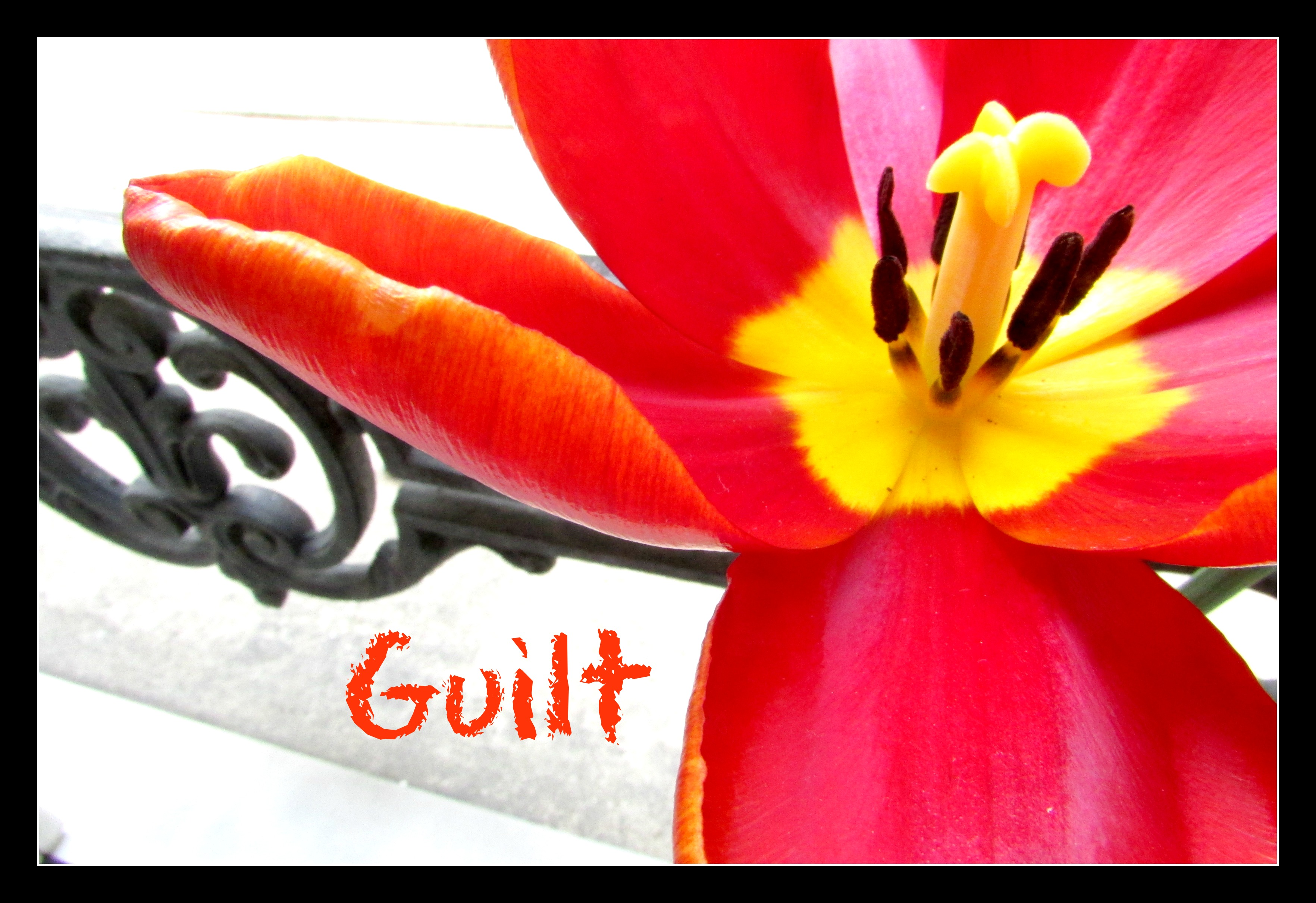 A Conversation on Grief and Mommy Guilt