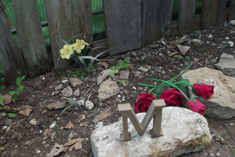 Stone with an 'M' sculpture and roses