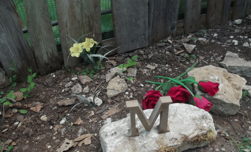 Surviving My Baby's Funeral: One Moment At A Time