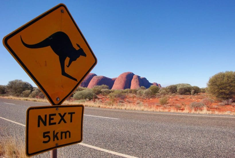 Kangaroo sign by the road