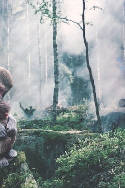 ape with baby infront of burning forest